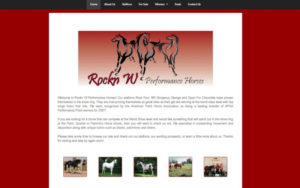 Rockn W Performance Horses
